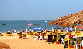 Winter Offers - GOA